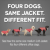 Kurgo paltas-liemenė šunims