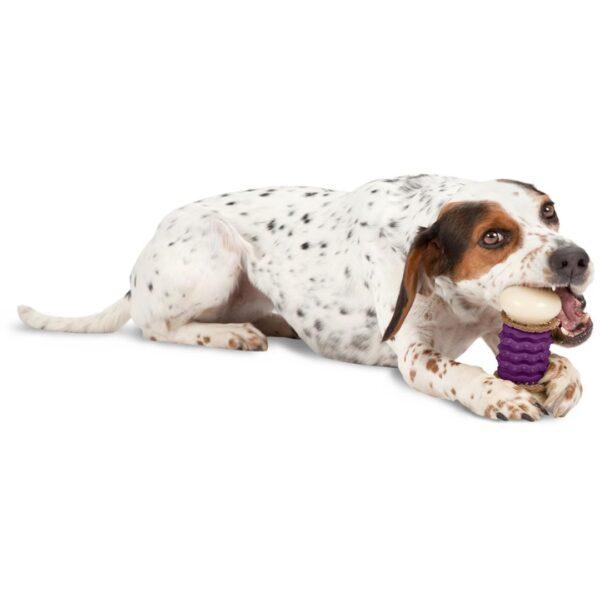 Petsafe Nubbly S žaislinis kaulas skanėstams mažiems šunims